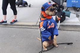 Chica-fan-Mets2