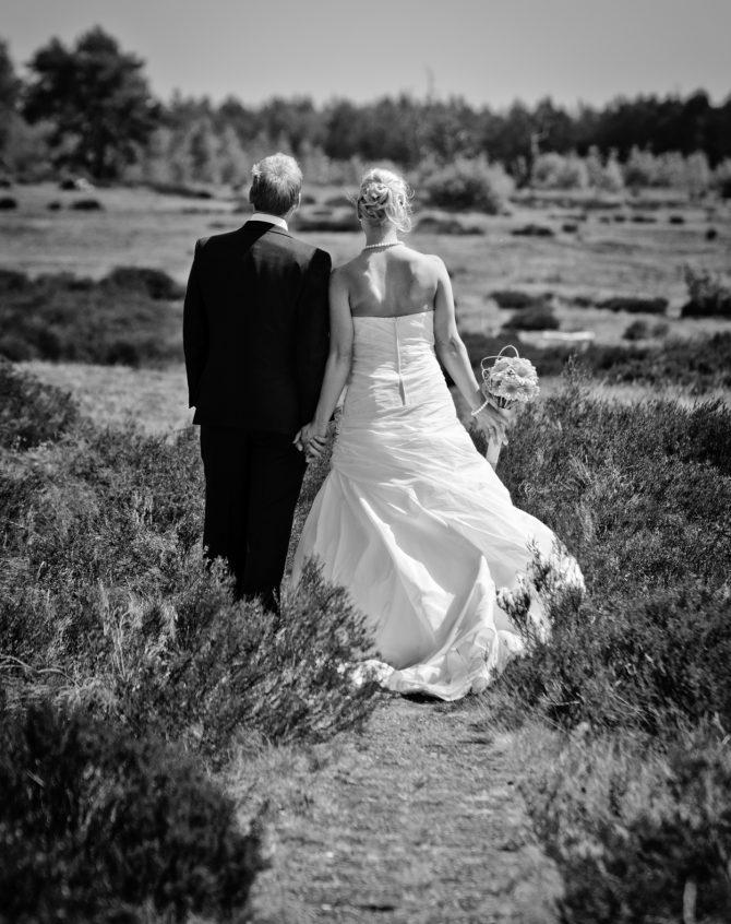 Matrimonio Catolico Segun La Biblia : Pueden casarse los primos hermanos? u2013 nuestra voz