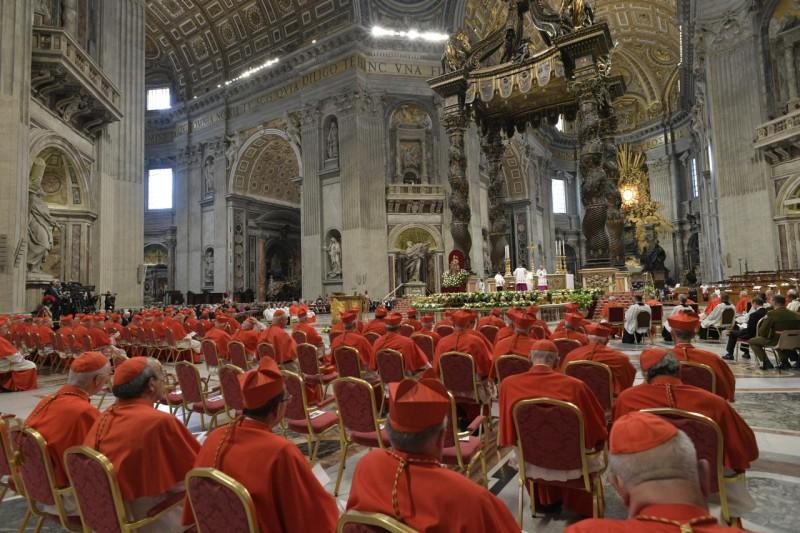 Trece nuevos cardenales para la Iglesia